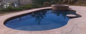 freeform kidney natural pool